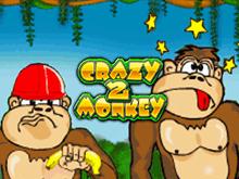 Играйте в видео слоты Crazy Monkey 2
