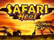 Игровые автоматы 777 – Safari Heat
